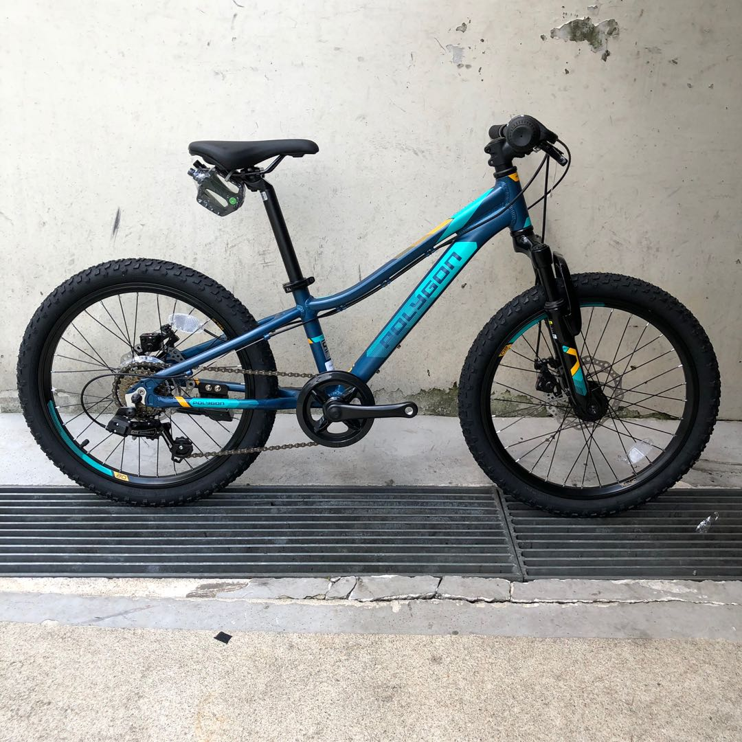 87e33c1c8dd New 2019: Polygon Relic 20 inch Kids Mountain Bike, Bicycles & PMDs ...
