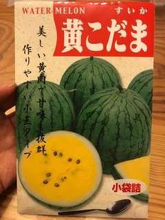 日本黃肉西瓜
