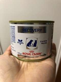 Royal Canin Recovery 罐罐
