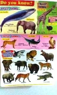 # to bless-Animal poster educational