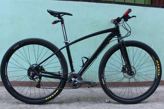 9995fa550 Cole Brontes XC Alivio 29er mountain bike