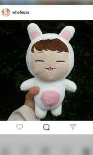 iKON bobby rabbit doll + free outfit