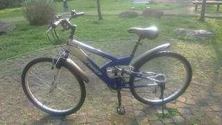 PATRIOT Mountain Bike