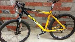 giant bike 26er