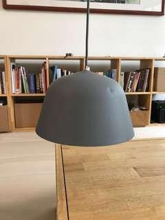 Pendant lamp (with track-light mount)