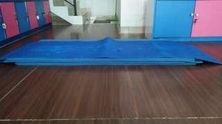Matras yoga tebal 0,6mm, pxl= 146x70cm