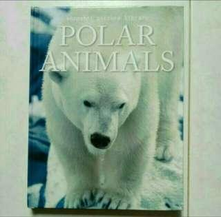 All about Polar Animals / Information Book