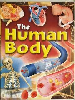 🚚 The Human Body Children's Reference Book by Brown Watson