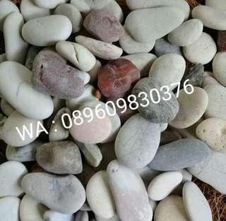 Batu Koral Panca Warna Hiasan Aquascape Dan Tanaman Pada Pot.