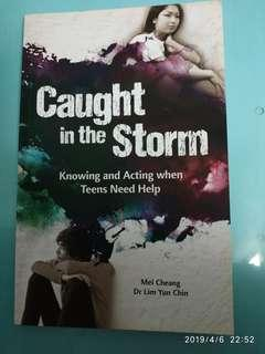 Book: Caught In The Storm