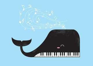 Piano Accompanist/ Music Exam Accompanist