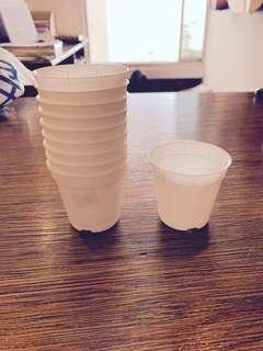 🚚 White Plastic Cups / Pots (5.5cm)