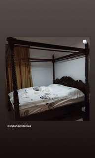 Tempat Tidur jati asli