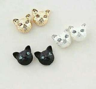 Anting Meow meong