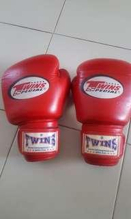 Twins Special 10 Oz Boxing Gloves