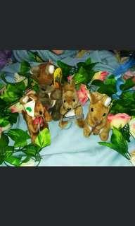 Boneka kangoro