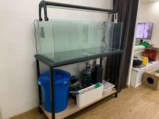 4ft fish tank, stand and T5 X4 light.