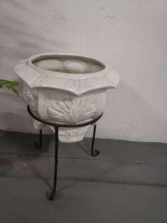 Flower Pot sale