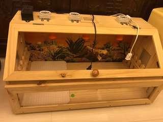 🚚 爬蟲箱(寵物飼養箱