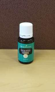 Young Living essential oil eucalyptus radiat a 15ml