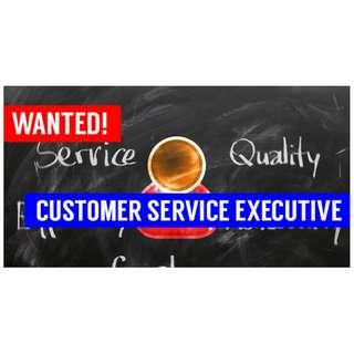 Wanted! Customer Service Executive