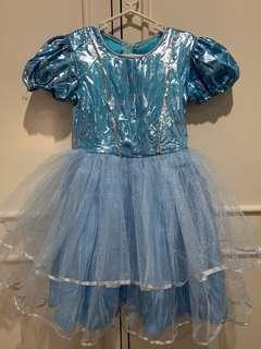 Princess Dress (4-6 years old)