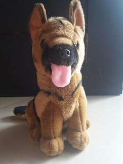 Brown Doggy