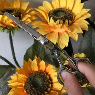 equinox hair cutting shears