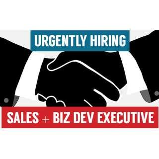 Wanted! Sales and Business Development Executive