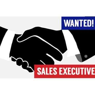 Wanted! Sales Executive (Outdoor)