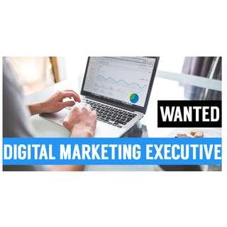 Wanted! Digital Marketing Executive
