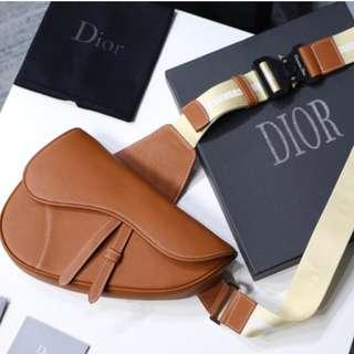 Dior saddle bag unisex 2019