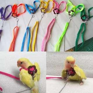 Bird leash adjustable harness