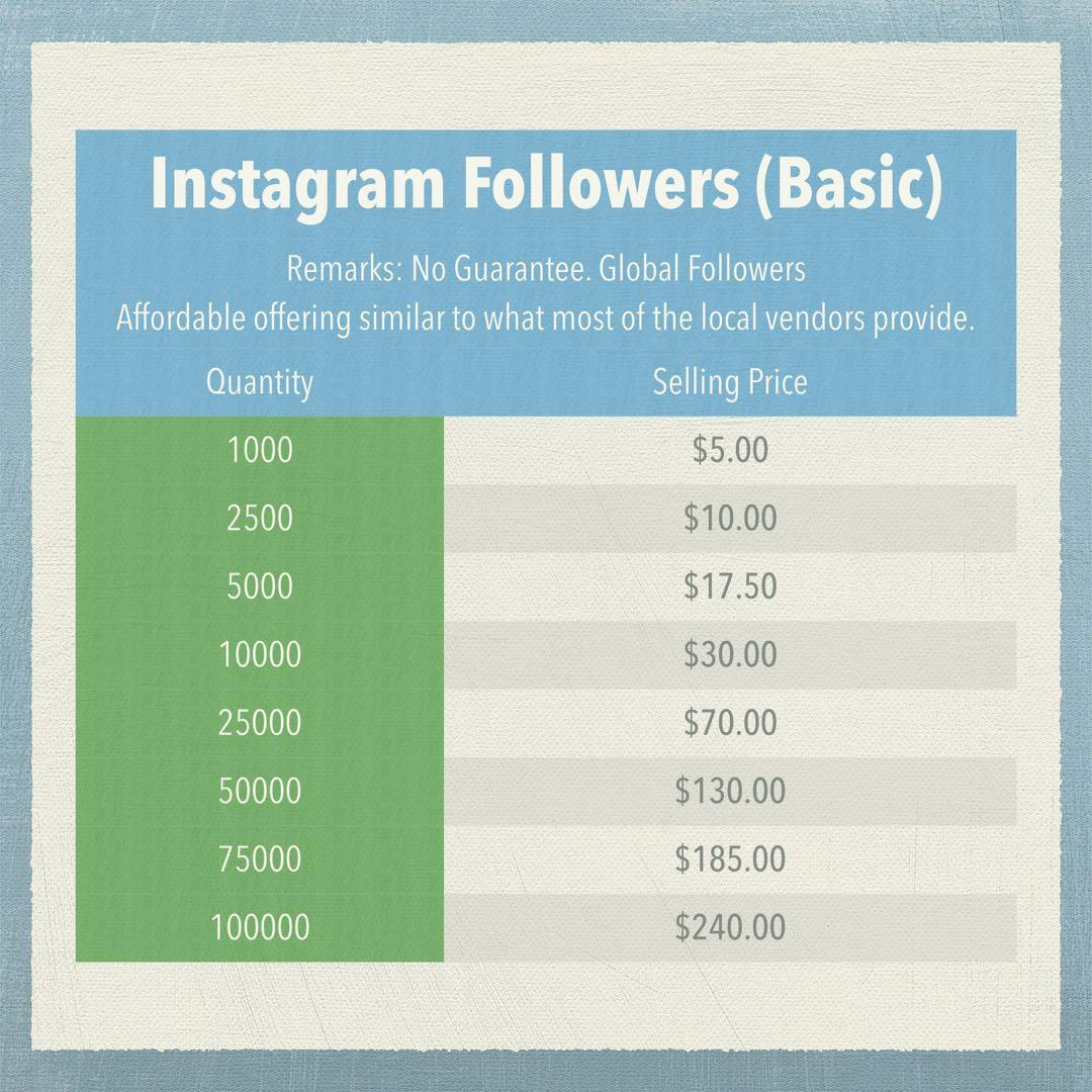 Instagram Followers, Everything Else on Carousell