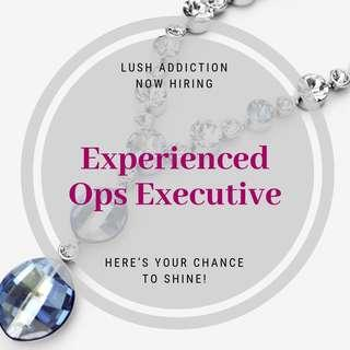 Operation Admin Executive (Up to S$1800 a month)