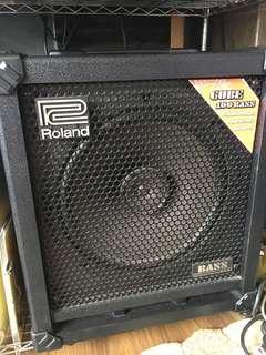 🚚 Roland bass amp