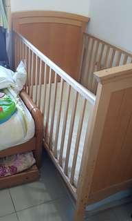 Baby-cot/Toddler Bed