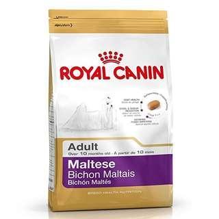 Royal Canin Maltese Bichon Maltais
