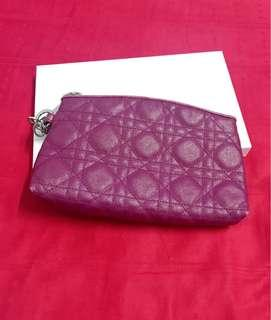 Dior Cosmetic Pouch