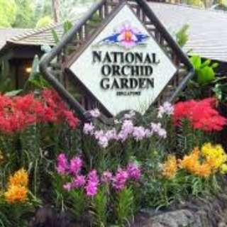 Singapore Orchid Garden - 3 Tickets left