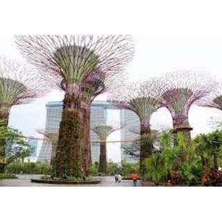 Gardens by the Bay 90-day E-ticket for both conservatories
