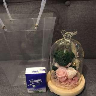 🈹現貨 永生花 保鮮花 玻璃瓶擺設 母親節禮物 生日禮物