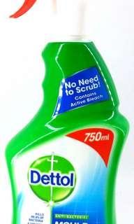 Dettol 殺菌除毛水垢清潔劑