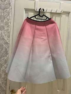 Pink Ombre Skirt