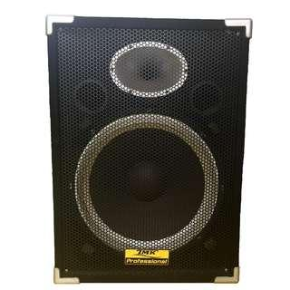 "Professional Speaker Set 15"" (Display Set)"