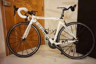 Orbea Gold/White Road Bike
