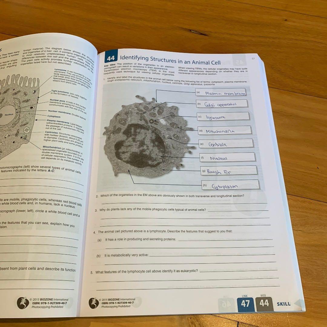 Biology for VCE: 2016: Units 1 & 2 : Student Workbook