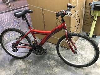Mertz Techno MTB bike