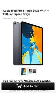 Apple pro 11 inch 64gb (grey colour)