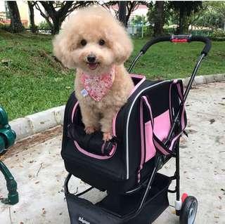 🚚 Ibiyaya double fun pet carrier stroller in PINK